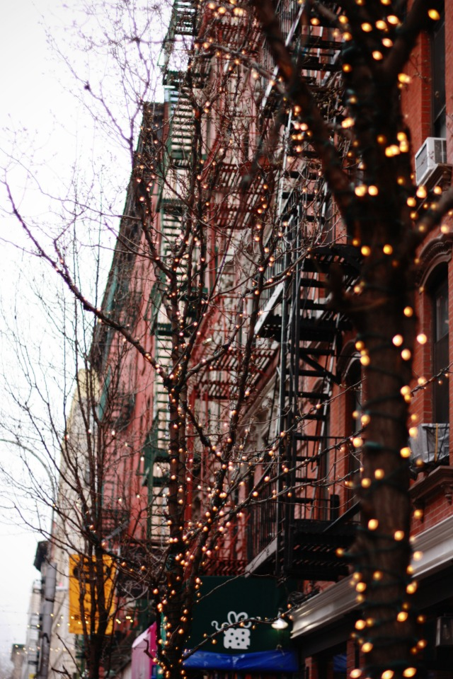 Fairy light trees in the East Village