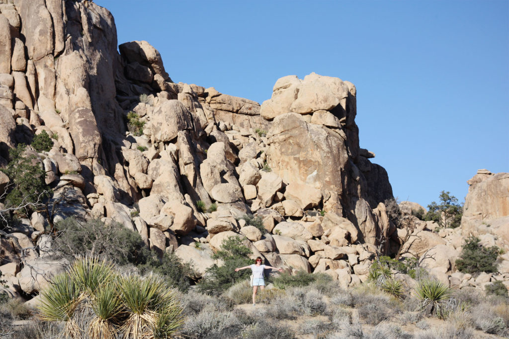 Joshua Tree trail